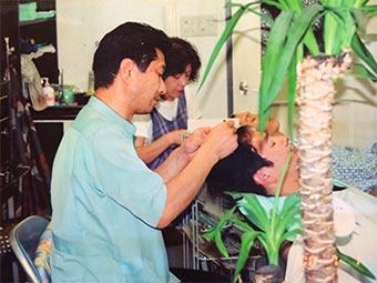 増毛のお客様で忙しい毎日(2000年)